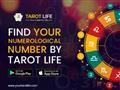Find the ultimate tool of self-discovery- Tarot Life Numerology App!