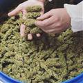Buy Medical Buds - Online Marijuana Dispensary