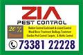 Pest Sanitize 73Anti Termite Treatment,  Wood Bor38122228 | 1084 | Commercial Sanitization Services